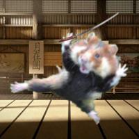 Hattori Hamzo