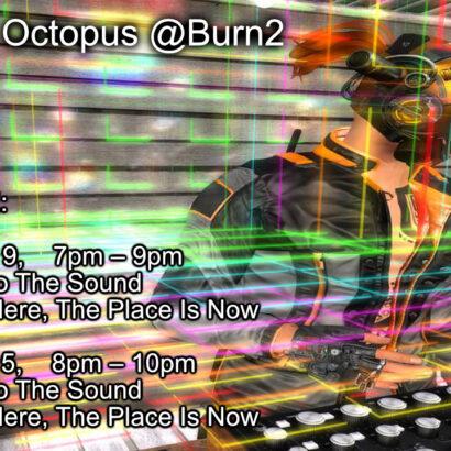 D. Octopus @Burning Man